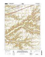Brownstown Illinois Current topographic map, 1:24000 scale, 7.5 X 7.5 Minute, Year 2015 from Illinois Map Store