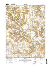 DeLong Illinois Current topographic map, 1:24000 scale, 7.5 X 7.5 Minute, Year 2015 from Illinois Maps Store
