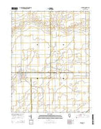 Newman Illinois Current topographic map, 1:24000 scale, 7.5 X 7.5 Minute, Year 2015 from Illinois Map Store