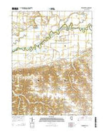 Newmansville Illinois Current topographic map, 1:24000 scale, 7.5 X 7.5 Minute, Year 2015 from Illinois Map Store