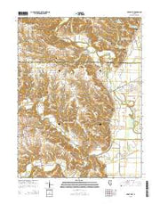 Perry East Illinois Current topographic map, 1:24000 scale, 7.5 X 7.5 Minute, Year 2015 from Illinois Maps Store