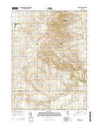 Whitefield Illinois Current topographic map, 1:24000 scale, 7.5 X 7.5 Minute, Year 2015