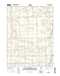 Woodworth Illinois Current topographic map, 1:24000 scale, 7.5 X 7.5 Minute, Year 2015