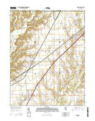Worden Illinois Current topographic map, 1:24000 scale, 7.5 X 7.5 Minute, Year 2015