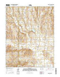 Proffitt Lake Kansas Current topographic map, 1:24000 scale, 7.5 X 7.5 Minute, Year 2016