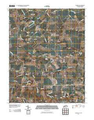Adairville Kentucky Historical topographic map, 1:24000 scale, 7.5 X 7.5 Minute, Year 2010