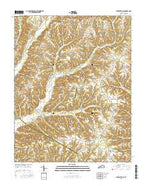 Clementsville Kentucky Current topographic map, 1:24000 scale, 7.5 X 7.5 Minute, Year 2016 from Kentucky Map Store