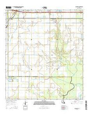 Lacassine Louisiana Current topographic map, 1:24000 scale, 7.5 X 7.5 Minute, Year 2015 from Louisiana Maps Store