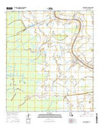 Napoleonville Louisiana Current topographic map, 1:24000 scale, 7.5 X 7.5 Minute, Year 2015 from Louisiana Map Store