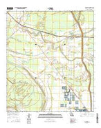 Palmetto Louisiana Current topographic map, 1:24000 scale, 7.5 X 7.5 Minute, Year 2015 from Louisiana Map Store