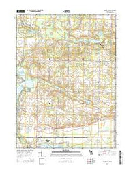 Adamsville Michigan Historical topographic map, 1:24000 scale, 7.5 X 7.5 Minute, Year 2014