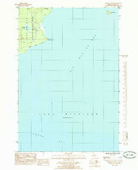 Chippewa Point Michigan Historical topographic map, 1:24000 scale, 7.5 X 7.5 Minute, Year 1985