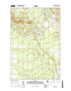 Driggs Lake Michigan Current topographic map, 1:24000 scale, 7.5 X 7.5 Minute, Year 2017 from Michigan Map Store