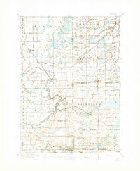 Elsie Michigan Historical topographic map, 1:62500 scale, 15 X 15 Minute, Year 1918