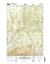 Mesick Michigan Current topographic map, 1:24000 scale, 7.5 X 7.5 Minute, Year 2016