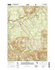 Mesick NE Michigan Current topographic map, 1:24000 scale, 7.5 X 7.5 Minute, Year 2016