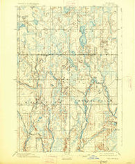 Ned Lake Michigan Historical topographic map, 1:62500 scale, 15 X 15 Minute, Year 1895