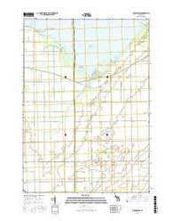 Quanicassee Michigan Current topographic map, 1:24000 scale, 7.5 X 7.5 Minute, Year 2016