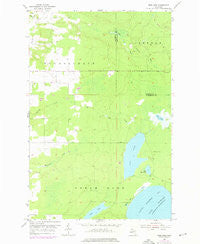Rice Lake Michigan Historical topographic map, 1:24000 scale, 7.5 X 7.5 Minute, Year 1954