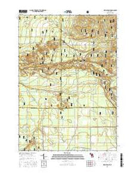 Wellston NE Michigan Current topographic map, 1:24000 scale, 7.5 X 7.5 Minute, Year 2016