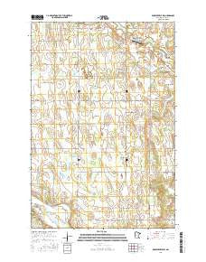 Browerville SW Minnesota Current topographic map, 1:24000 scale, 7.5 X 7.5 Minute, Year 2016
