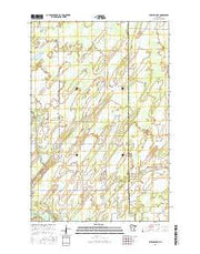 Burgen Lake Minnesota Current topographic map, 1:24000 scale, 7.5 X 7.5 Minute, Year 2016 from Minnesota Maps Store