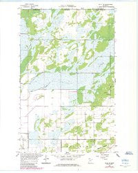 Salol NE Minnesota Historical topographic map, 1:24000 scale, 7.5 X 7.5 Minute, Year 1966