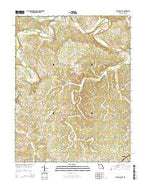 Spring Bluff Missouri Current topographic map, 1:24000 scale, 7.5 X 7.5 Minute, Year 2015 from Missouri Map Store