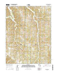 Van Cleve Missouri Current topographic map, 1:24000 scale, 7.5 X 7.5 Minute, Year 2015