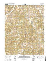 Vanzant Missouri Current topographic map, 1:24000 scale, 7.5 X 7.5 Minute, Year 2015