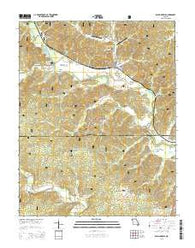 Williamsville Missouri Current topographic map, 1:24000 scale, 7.5 X 7.5 Minute, Year 2015