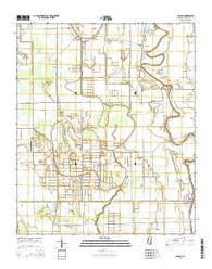 Arcola Mississippi Current topographic map, 1:24000 scale, 7.5 X 7.5 Minute, Year 2015