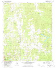 Bagley Lake Mississippi Historical topographic map, 1:24000 scale, 7.5 X 7.5 Minute, Year 1980