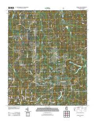 Bagley Lake Mississippi Historical topographic map, 1:24000 scale, 7.5 X 7.5 Minute, Year 2012