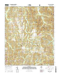 Bagley Lake Mississippi Current topographic map, 1:24000 scale, 7.5 X 7.5 Minute, Year 2015