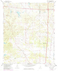 Bailey Lake Mississippi Historical topographic map, 1:24000 scale, 7.5 X 7.5 Minute, Year 1975