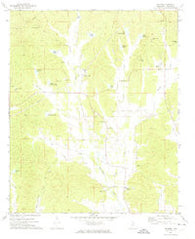 Banner Mississippi Historical topographic map, 1:24000 scale, 7.5 X 7.5 Minute, Year 1972