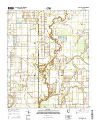 Bear Gut Bayou Mississippi Current topographic map, 1:24000 scale, 7.5 X 7.5 Minute, Year 2015
