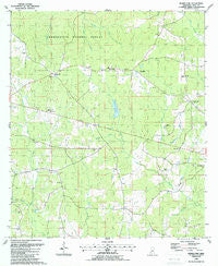 Bewelcome Mississippi Historical topographic map, 1:24000 scale, 7.5 X 7.5 Minute, Year 1988