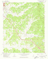 New Albany East Mississippi Historical topographic map, 1:24000 scale, 7.5 X 7.5 Minute, Year 1980