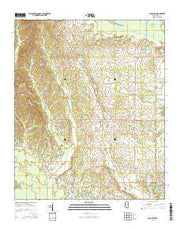 Palo Alto Mississippi Current topographic map, 1:24000 scale, 7.5 X 7.5 Minute, Year 2015 from Mississippi Maps Store