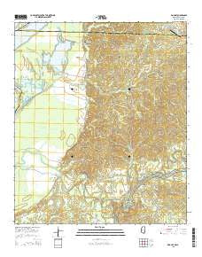 Rodney Mississippi Current topographic map, 1:24000 scale, 7.5 X 7.5 Minute, Year 2015