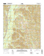Singleton Mississippi Current topographic map, 1:24000 scale, 7.5 X 7.5 Minute, Year 2015 from Mississippi Map Store