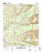 Steens Mississippi Current topographic map, 1:24000 scale, 7.5 X 7.5 Minute, Year 2015 from Mississippi Map Store