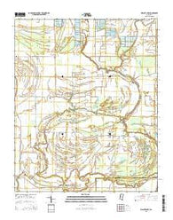 Walnut Lake Mississippi Current topographic map, 1:24000 scale, 7.5 X 7.5 Minute, Year 2015