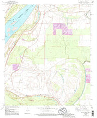 Whiting Bayou Mississippi Historical topographic map, 1:24000 scale, 7.5 X 7.5 Minute, Year 1994