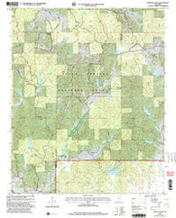 Whitten Town Mississippi Historical topographic map, 1:24000 scale, 7.5 X 7.5 Minute, Year 2000