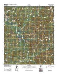 Wilkinson Mississippi Historical topographic map, 1:24000 scale, 7.5 X 7.5 Minute, Year 2012