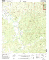 Wilkinson Mississippi Historical topographic map, 1:24000 scale, 7.5 X 7.5 Minute, Year 2000