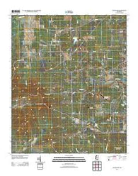 Woodland Mississippi Historical topographic map, 1:24000 scale, 7.5 X 7.5 Minute, Year 2012